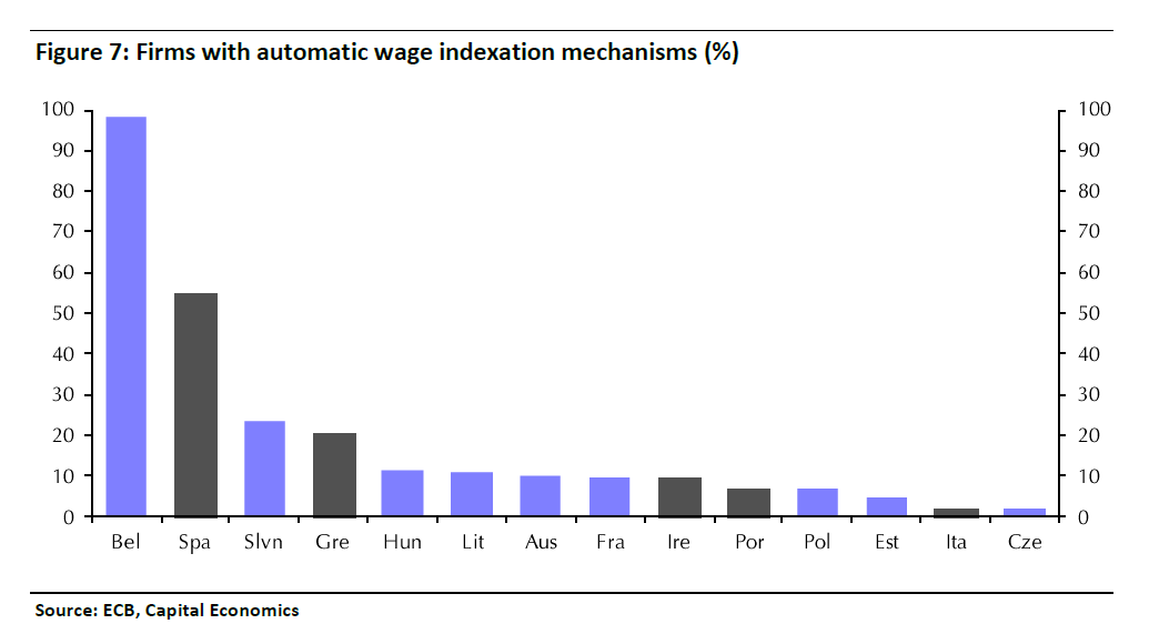Firms with automatic wages indexations